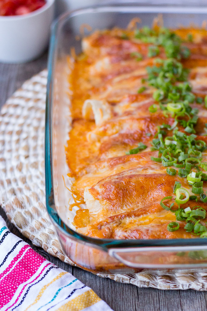 cheesy chicken enchiladas (gluten free) - hot pan kitchen