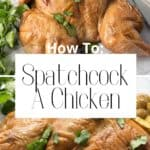 pin for how to spatchcock a chicken